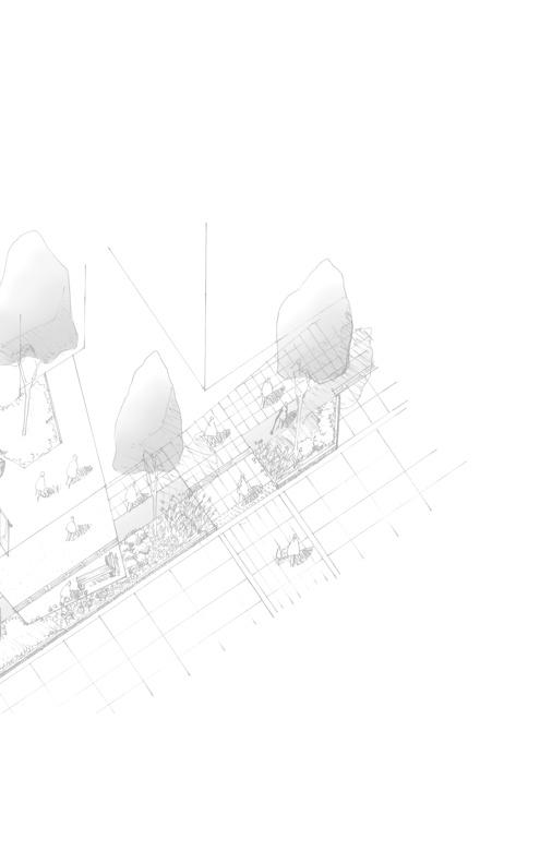 background site plan image